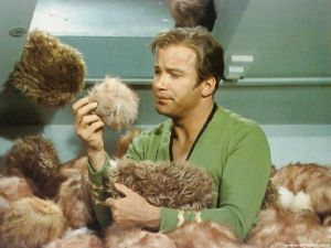 Captain Kirk Buried in Tribbles