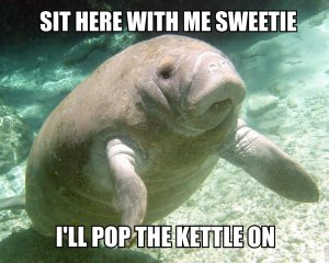 "Calming Manatee saying ""Sit with me sweetie, I'll pop the kettle on."""