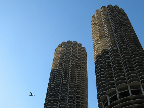 Marina City, a blue sky, and a bird.