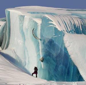 A woolly mammoth frozen in ice.
