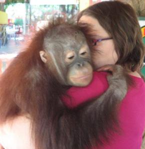 Your blogger, JenniferP, hugging a baby orangutan in Indonesia in 2007.