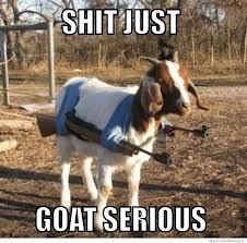 A white goat with a red head and ears, which mysteriously has an M-14 rifle strapped to each side. The caption reads SHIT JUST GOAT SERIOUS.