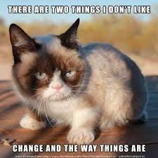 """A grumpy cat """"there are two things I don't like: Change and the way things are."""""""