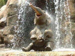 Baby elephant giving itself a bath