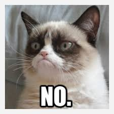 "Grumpycat saying ""no."""
